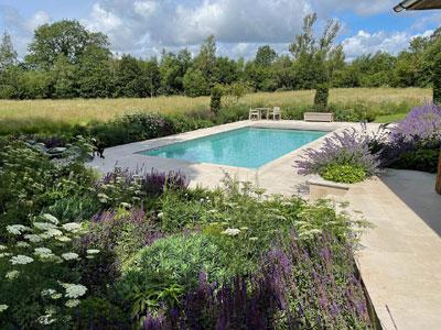 Swimming Pool. Meadow planting. Sussex Garden Design. Terrace design. Nepeta. Ammi visage. Lavender. Planting plans.