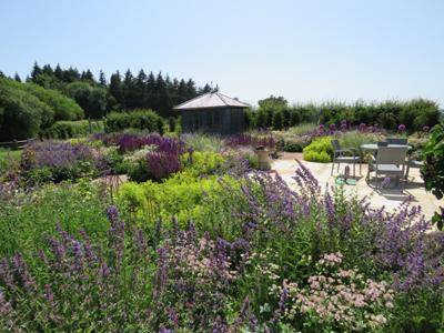 A top of the hill garden