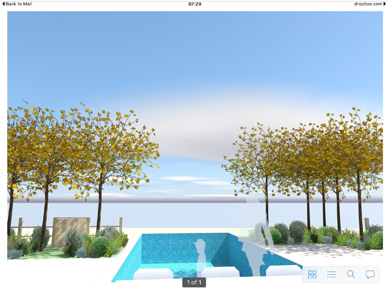 3D image presented to the client