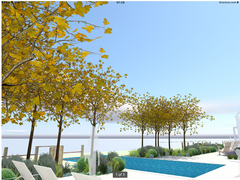 3D representation to show the pool and pleached trees