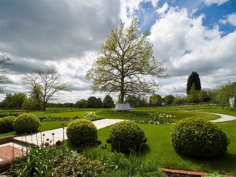 The large oak tree has a bespoke, white wooden seat with 1000 snowdrops beneath