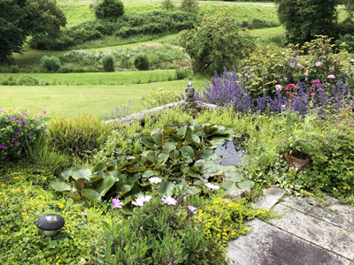 Sussex Farm Garden